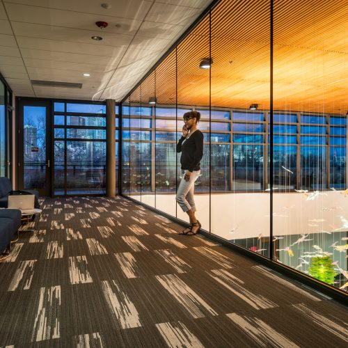 Vetrotech Saint Gobain glass used in the Confluence building, Community College of Denver, February 13, 2015.